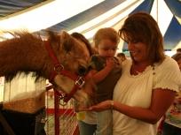 ACF camel feed