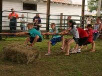 ACF farm tug