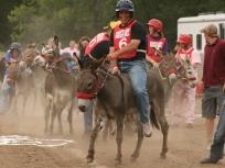 ACF donkey bernie